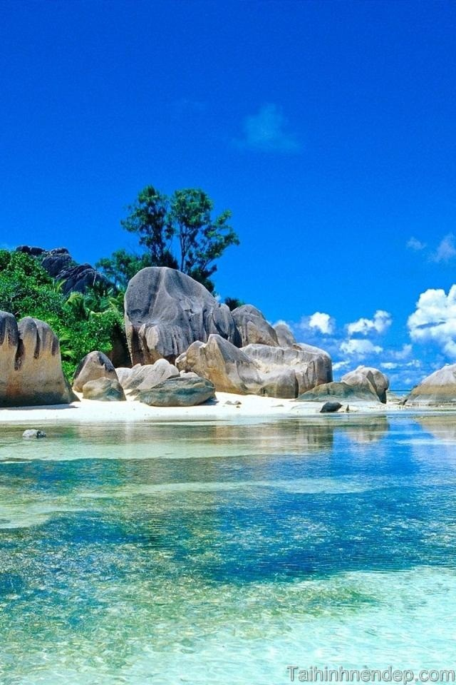 Biển đẹp tình ta làm hình nền điện thoại phong cảnh