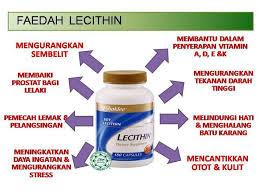 Khasiat Dan Kebaikan Lecithin Shaklee - Turunkan Berat Badan