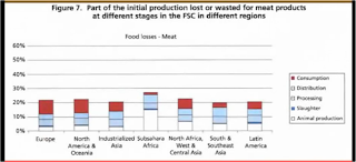Food waste by country and point of loss