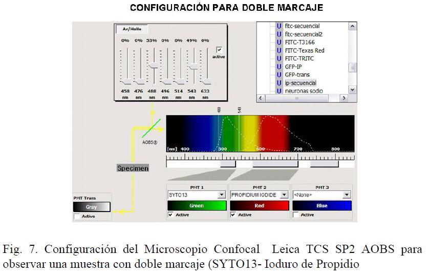 39 Laser Diodes Applications Conocimientos Com Ve
