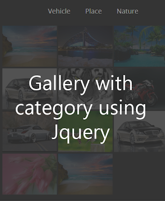 Create a simple image gallery with category using Jquery