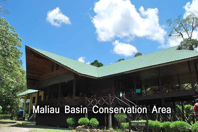 Maliau Basin Conservation Area