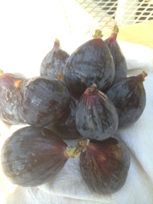 Fresh figs, washed and waiting to be sliced