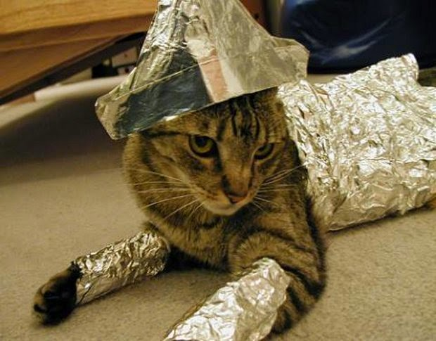 "Cats hate being surprised by loud unexpected sounds, and the tearing off of aluminum foil is high on the ""hate"" list. The cat figures if you are even handling the foil, that terrible sound is about to happen without ntoice. Some time in the past, your cat has been horribly startled by the sound."