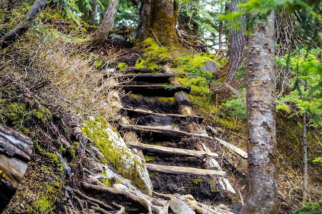 Кто-то заботливо поставил в некоторых местах мосточки через горные ручьи и вот такие живописные лесницы.