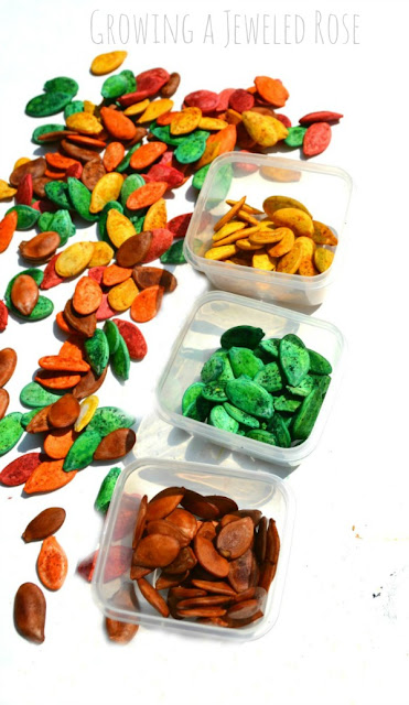 Make your own colored and scented pumpkin seeds & capture all the alluring aromas of Fall.  So many ways to PLAY!