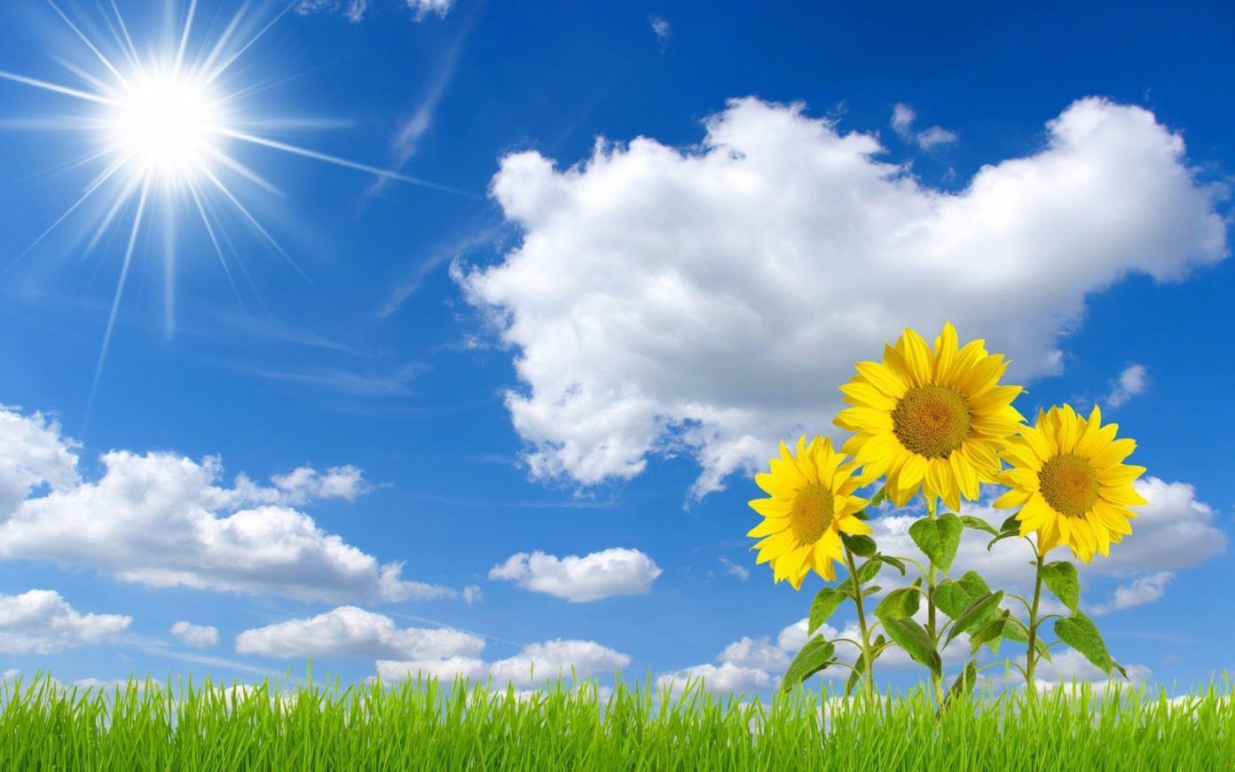 ... siang hari terbaru koleksi gambar langit biru terbaru gambar gambar