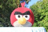 Vihaisen linnun ohje