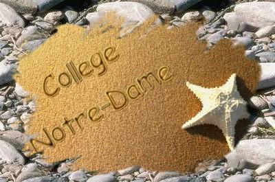 Collège Notre Dame Berck / Mer