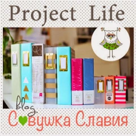 Баннер проекта Project Life - Совушка Славия