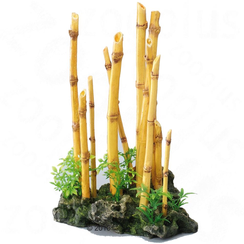Maceflor donde las plantas quieren vivir ofertas especiales for Bambu decoracion interior