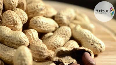 Peanuts Arizone International LLP Vapi