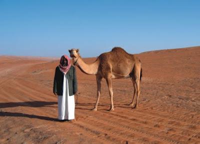 Camel pics