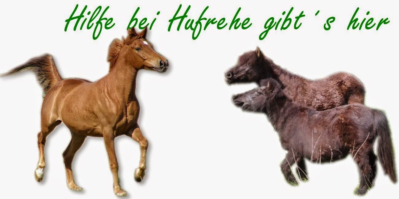 http://www.tierheilkundezentrum.info/pferde/Hufe/Hufrehe/