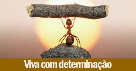 Viva com determinação