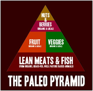 Why the Paleo Diet