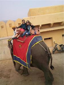 Viaje a India 2018