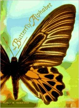 http://www.amazon.com/Butterfly-Alphabet-Kjell-Bloch-Sandved/dp/0590480030/ref=sr_1_2?s=books&ie=UTF8&qid=1430530976&sr=1-2&keywords=butterfly+alphabet+book