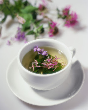 Beebalm and other flowers float in a cup of herbal tea made with catnip, motherwort, beebalm, laven