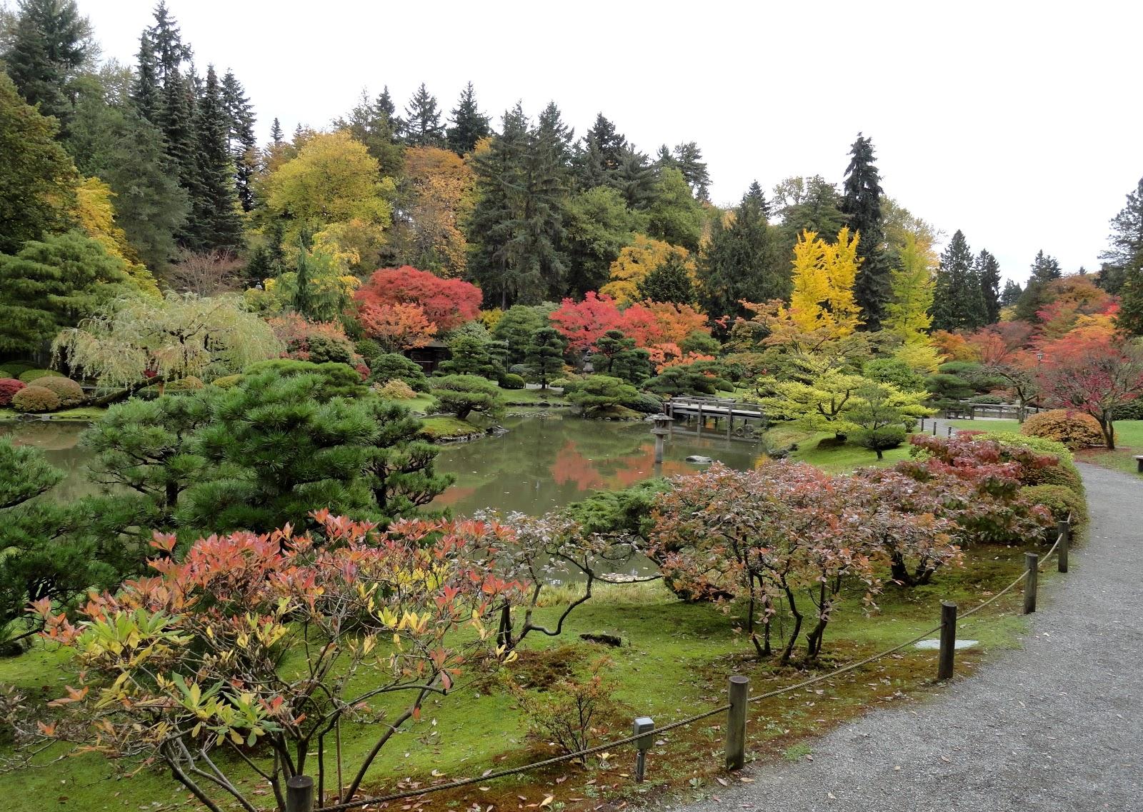 danger garden: The Seattle Japanese Garden