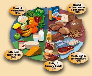 Tips Diet Agar Cepat Kurus