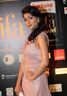 Anisha Ambrose Still in Stylish Dress at IIFA Utsavam Awards 2016 Day 2 (19)