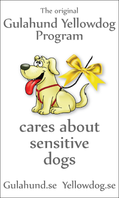 Especially For Reactive, Sick, or Sensitive Dogs