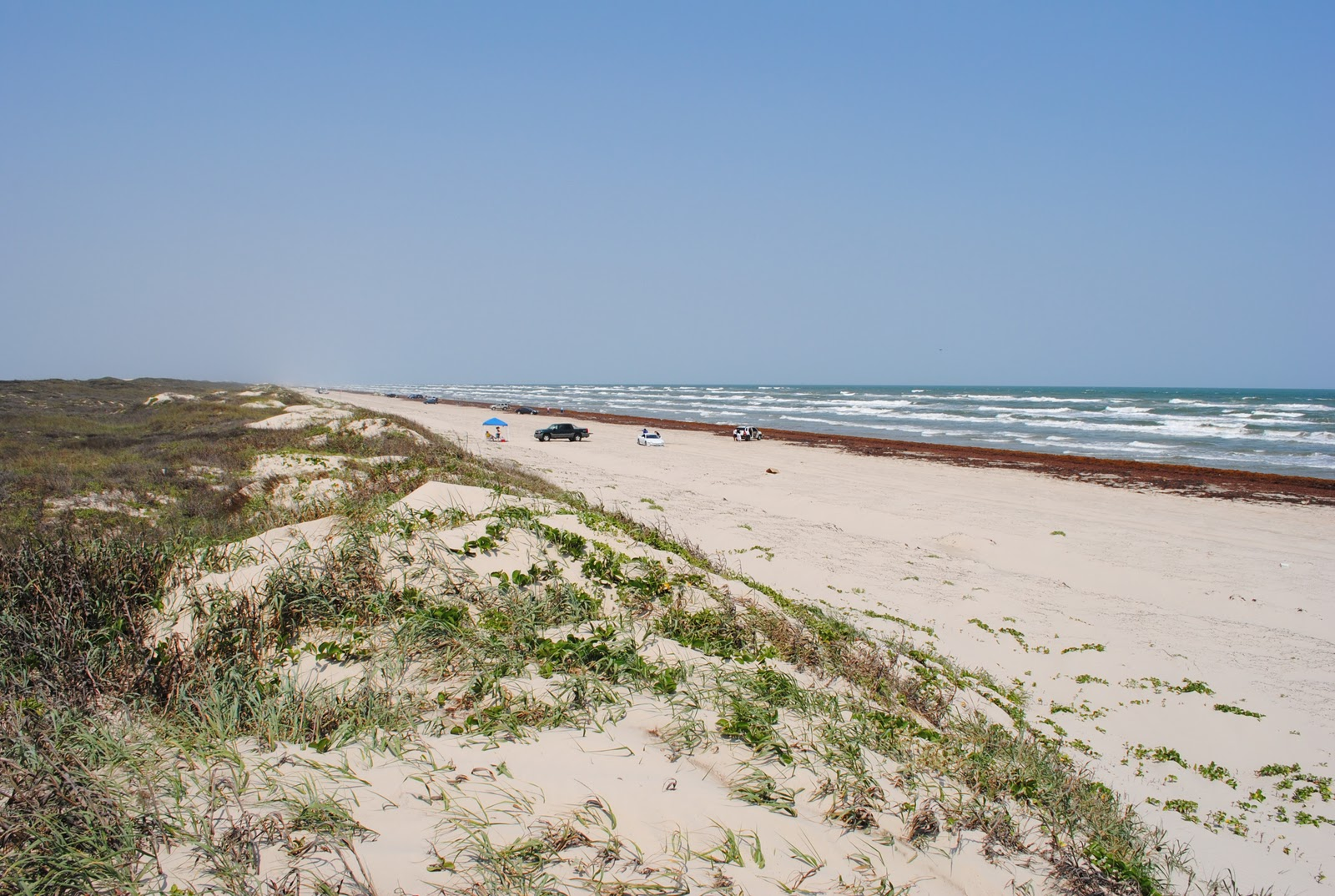Hotels In Padre Island Tx On The Beach