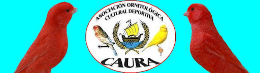 Asociación Ornitológica Cultural Deportiva CAURA