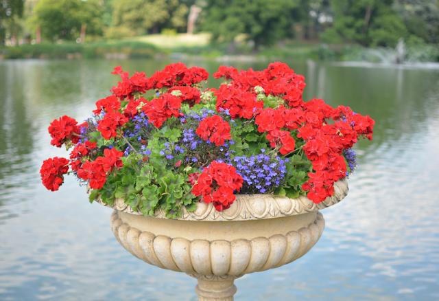 Kew Gardens, Summer