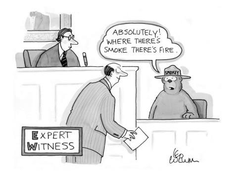 expert testimony quotes