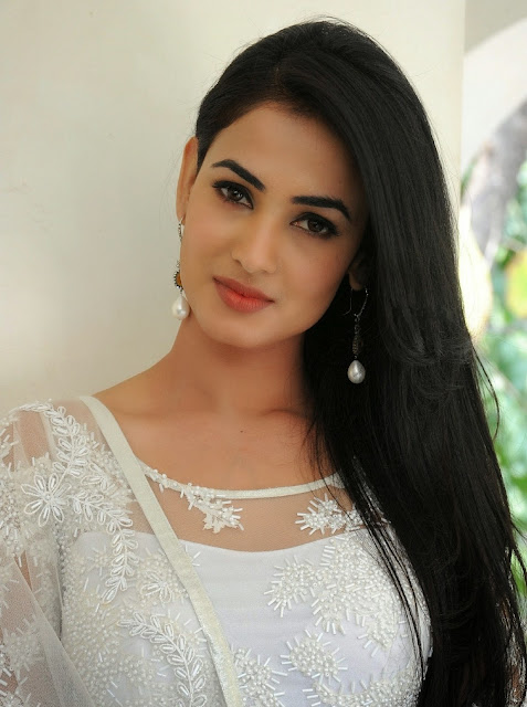 Sonal Chauhan in White Saree at Legend Movie Success Meet