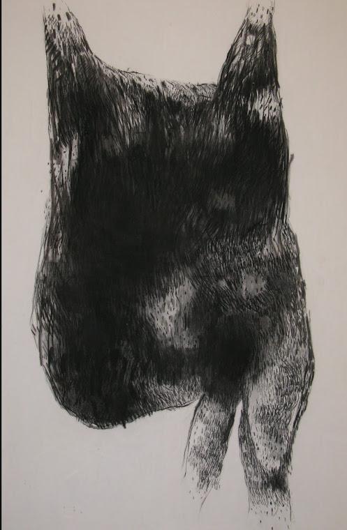 Fusain / toile 150x100 2011