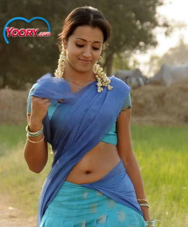Trisha Hot Stills In Saree Movieadda