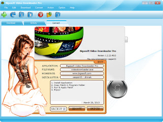 Bigasoft Video Downloader Pro 1.2.23.4815 Incl Patch