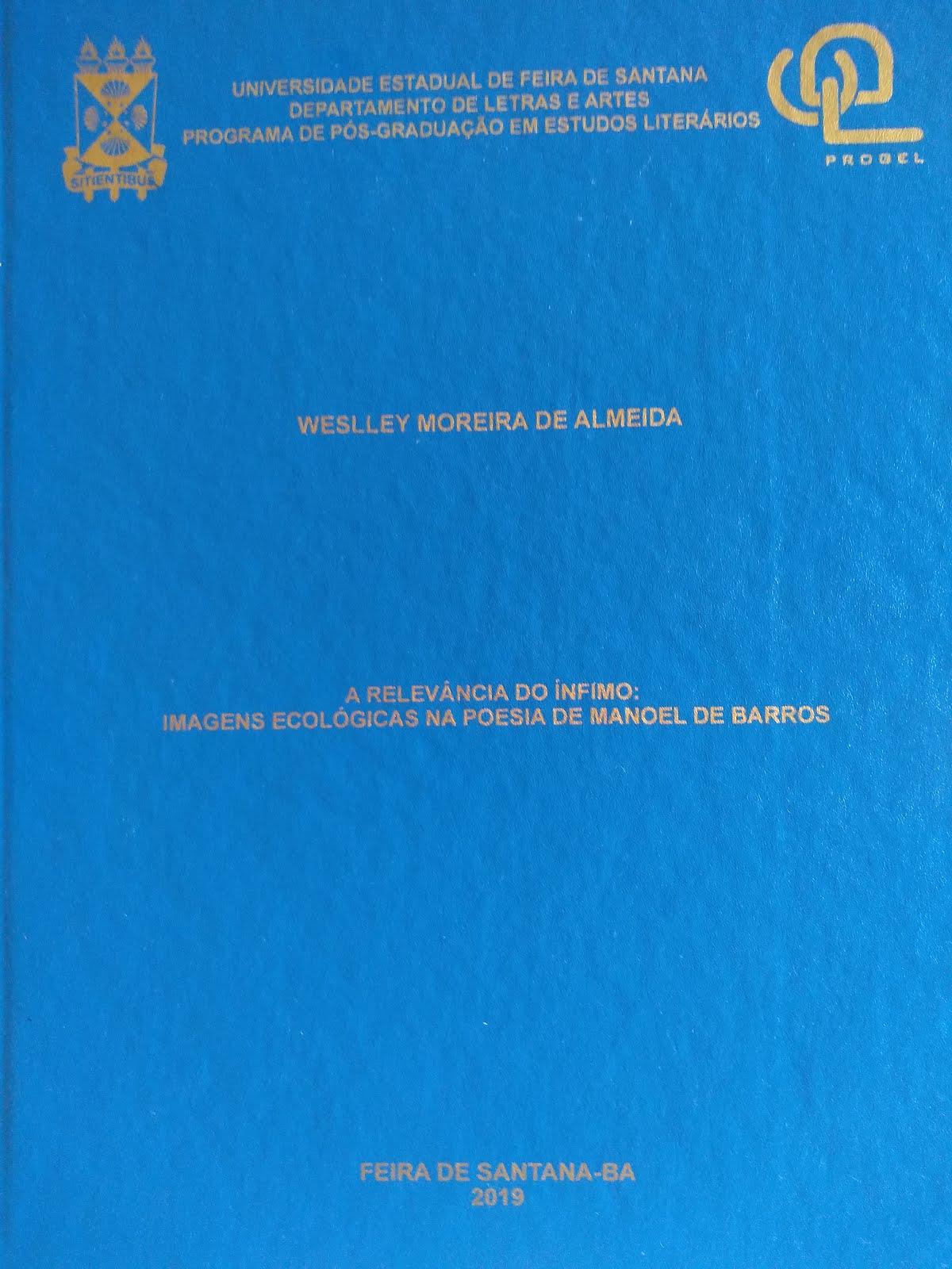 A relevância do ínfimo: imagens ecológicas na poesia de Manoel de Barros