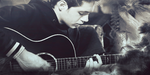 http://hunter-niall-horan-fan-fiction.blogspot.com/