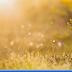 Ghost Windows XP đa cấu hình, cập nhật tháng 5/2014 - Full soft cho dân đồ họa