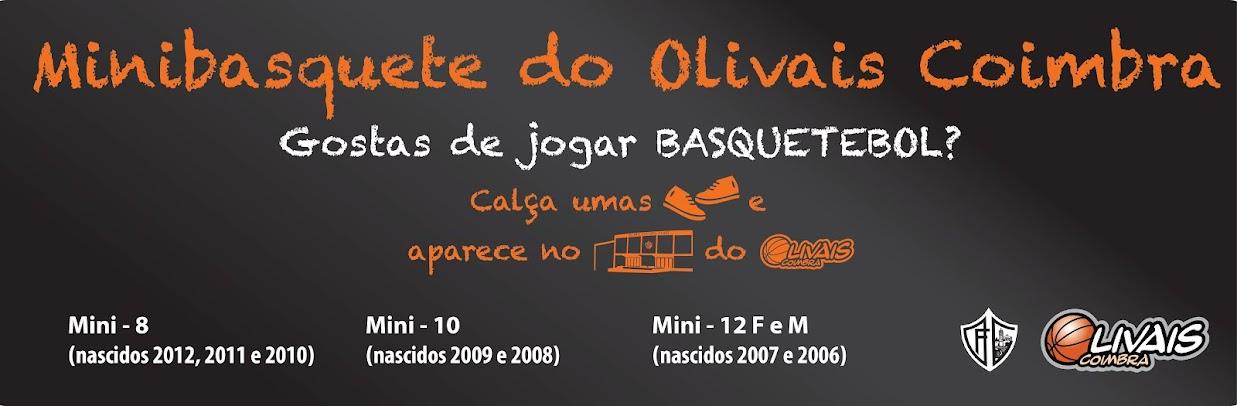 Minibasquete do Olivais Coimbra