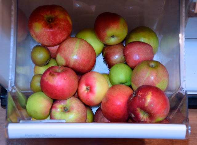 Apples in fridge