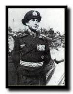 Oberst Stenglein