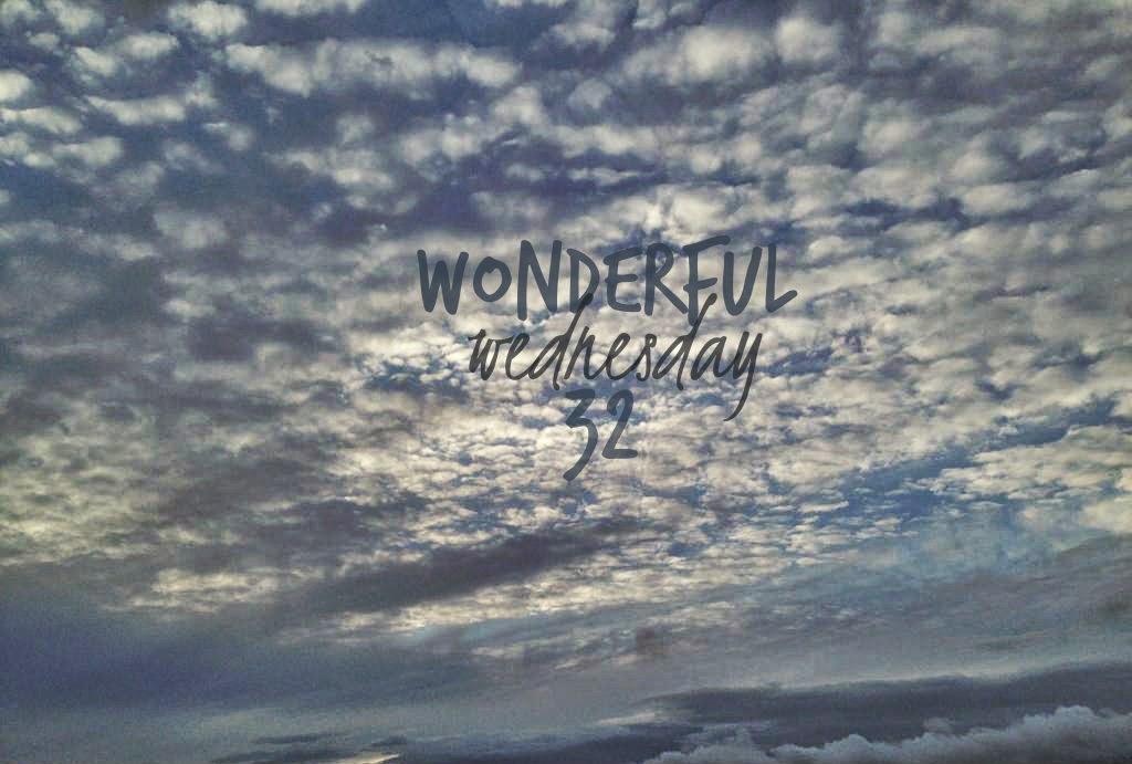 Wonderful Wednesday #32