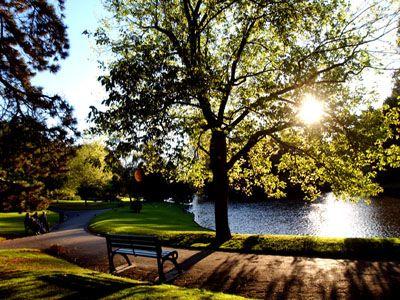 Le Parc Barbieux dit le Beau Jardin: Le bassin, létang ou