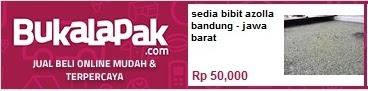 http://www.bukalapak.com/p/rumah-tangga/home-stuff/4jdtz-jual-sedia-bibit-azolla-bandung-jawa-barat