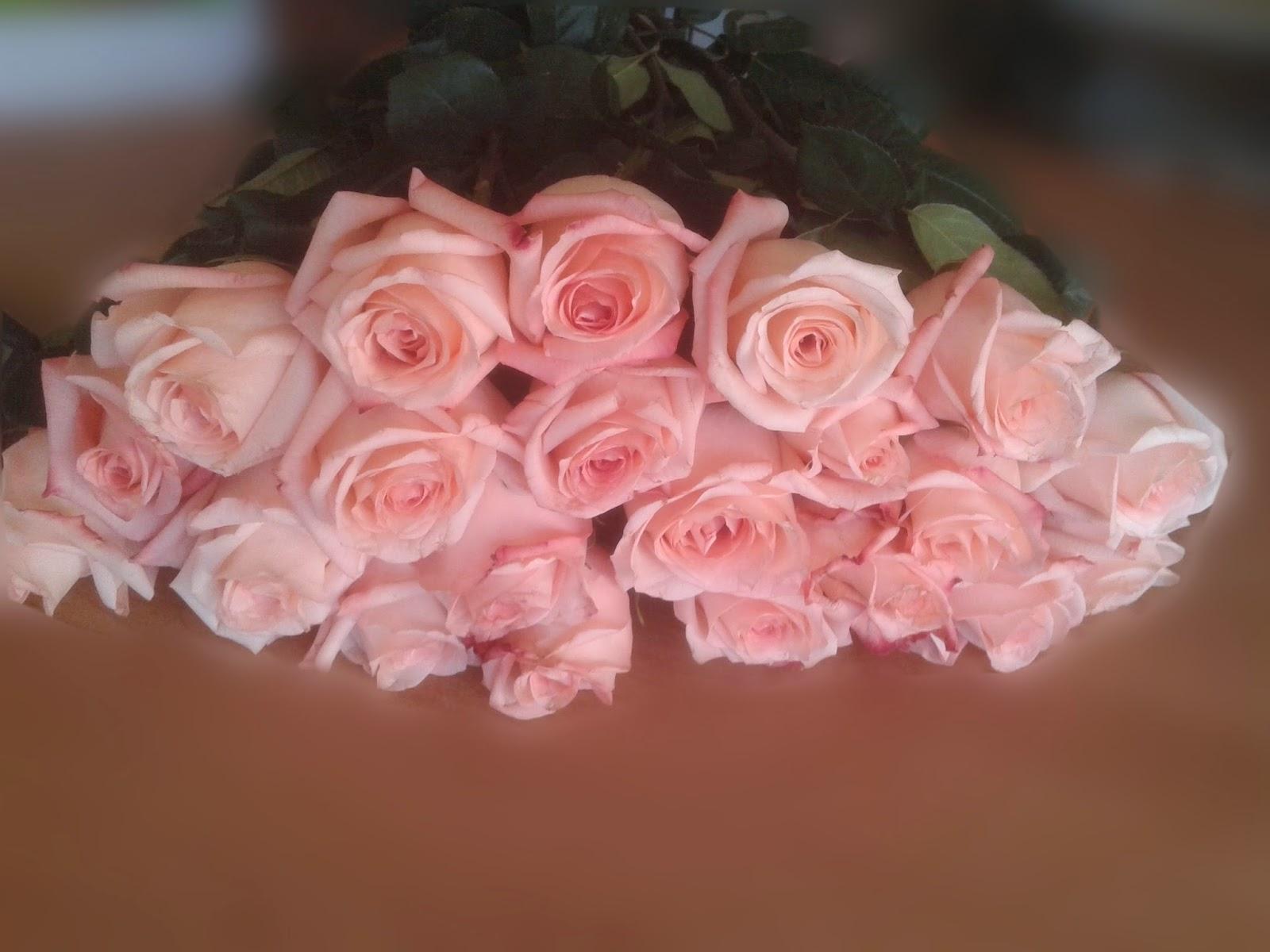 Азалия значение цветка по фен шуй