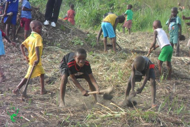 Nella missione in Togo i bambini lavorano la terra