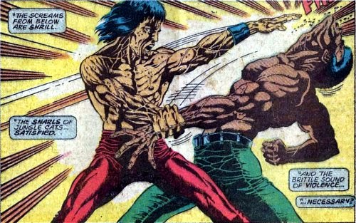 Viñeta de Master of Kung Fu