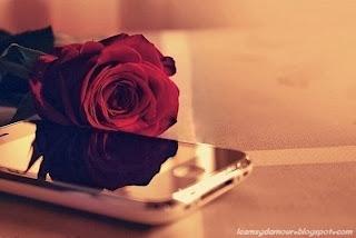 Doux sms d'amour pour votre chéri(e).