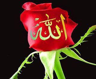 مدونة جمال اسلاميك