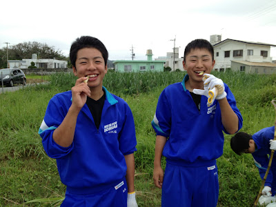体験/観光 沖縄修学旅行 サトウキビ刈り